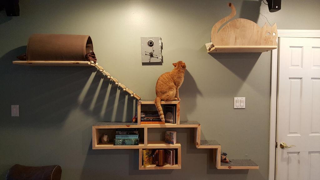 Как сделать игровой комплекс для кошки своими руками